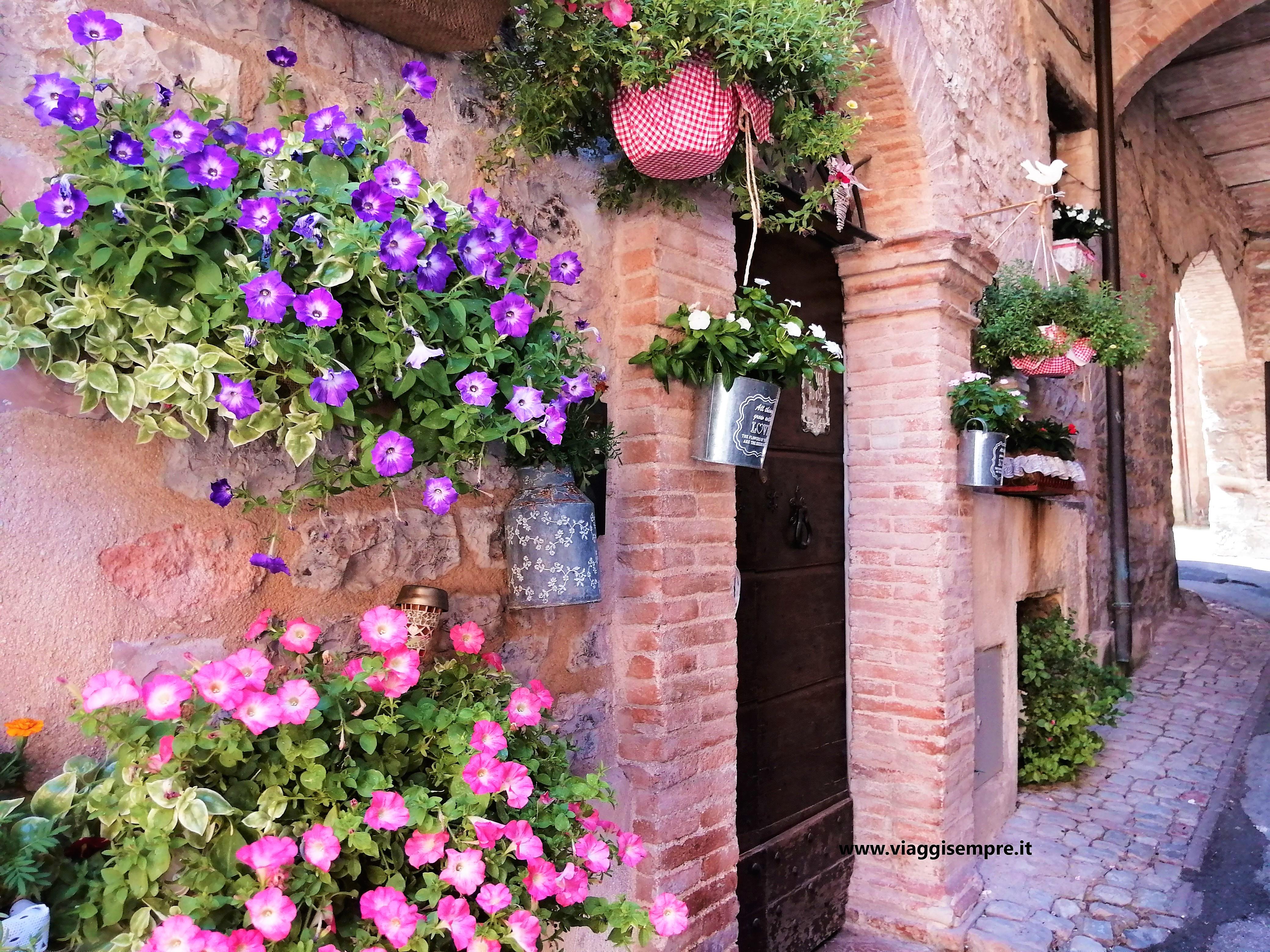 Fiori Del Mese Di Giugno spello, città d'arte e dei fiori - viaggisempre